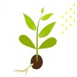 Pflanzenschutz & Düngetechnik